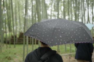 雨が降り出したけど.jpg
